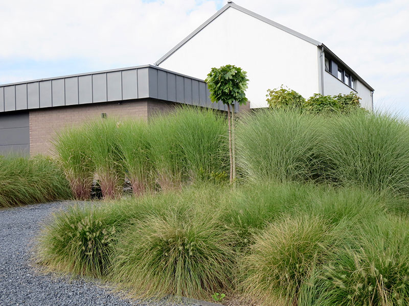 martine pinchart architecte paysagiste architecte de jardin paysagiste belgrade namur. Black Bedroom Furniture Sets. Home Design Ideas